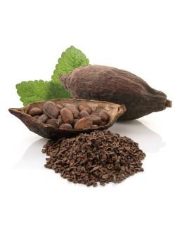 Cacao criollo Nibs ECO granel