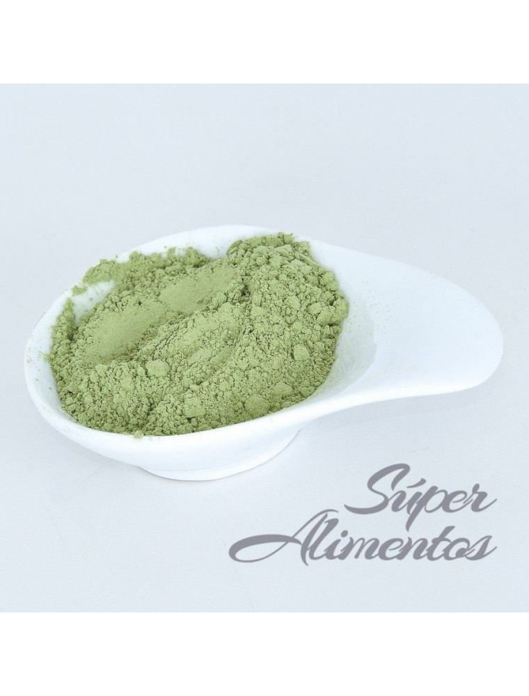 Trigo verde polvo ECO granel