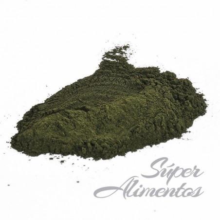 Chlorella ECO granel