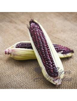 Maiz morado ECO harina granel