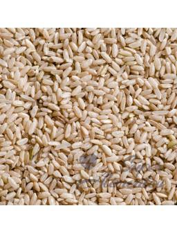 Arroz integral ECO granel