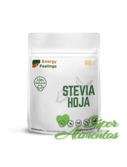 Stevia Hoja